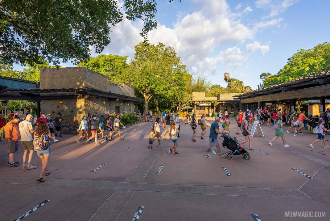 Guests entering Disney's Animal Kingdom without masks for the first time since the park reopened